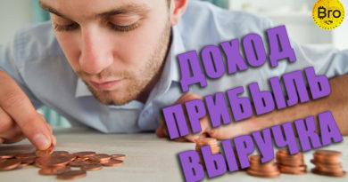 Отличие дохода от прибыли и выручки